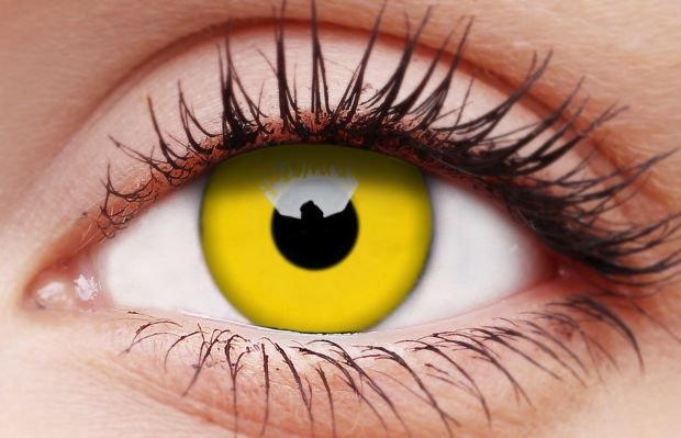 Yellow 1 Year Coloured Contact Lenses