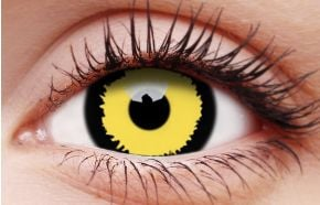 Tigera Coloured Contact Lenses
